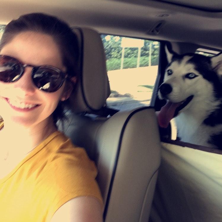 Anne & Carter's dog boarding