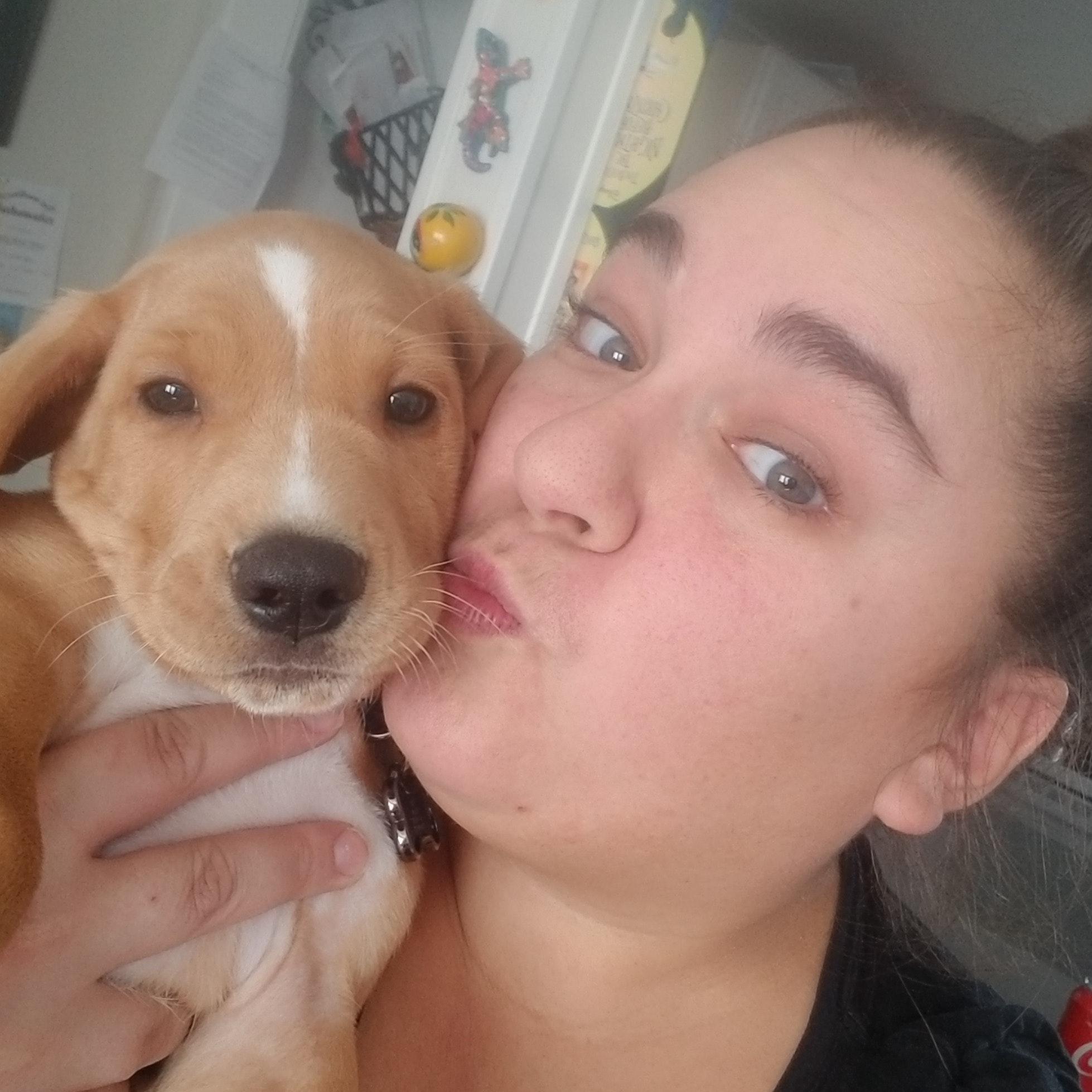 Carolyn's dog day care