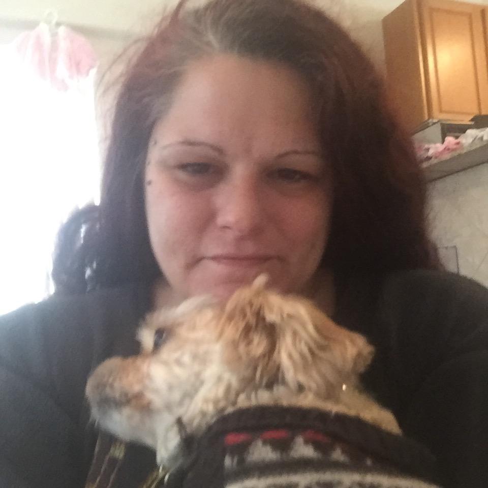 Kerri Ann's dog boarding