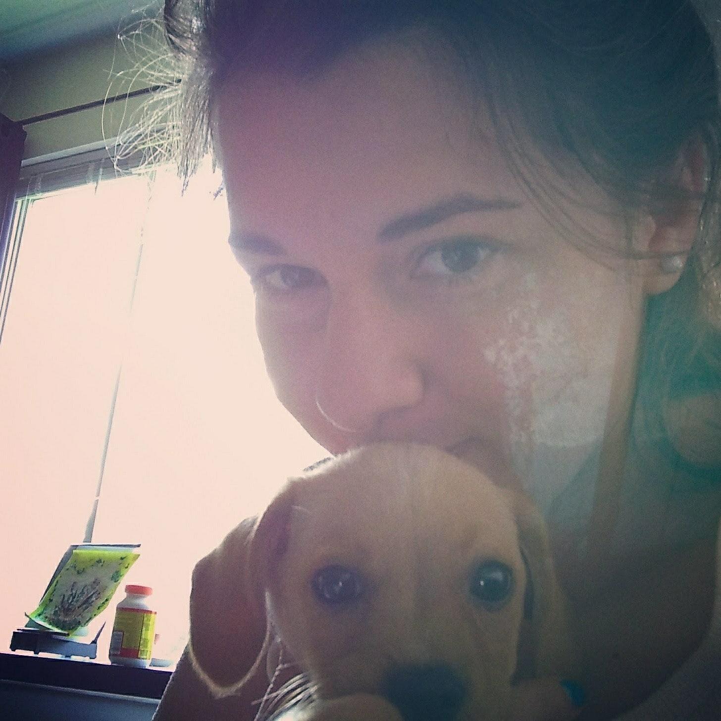 Irina's dog boarding
