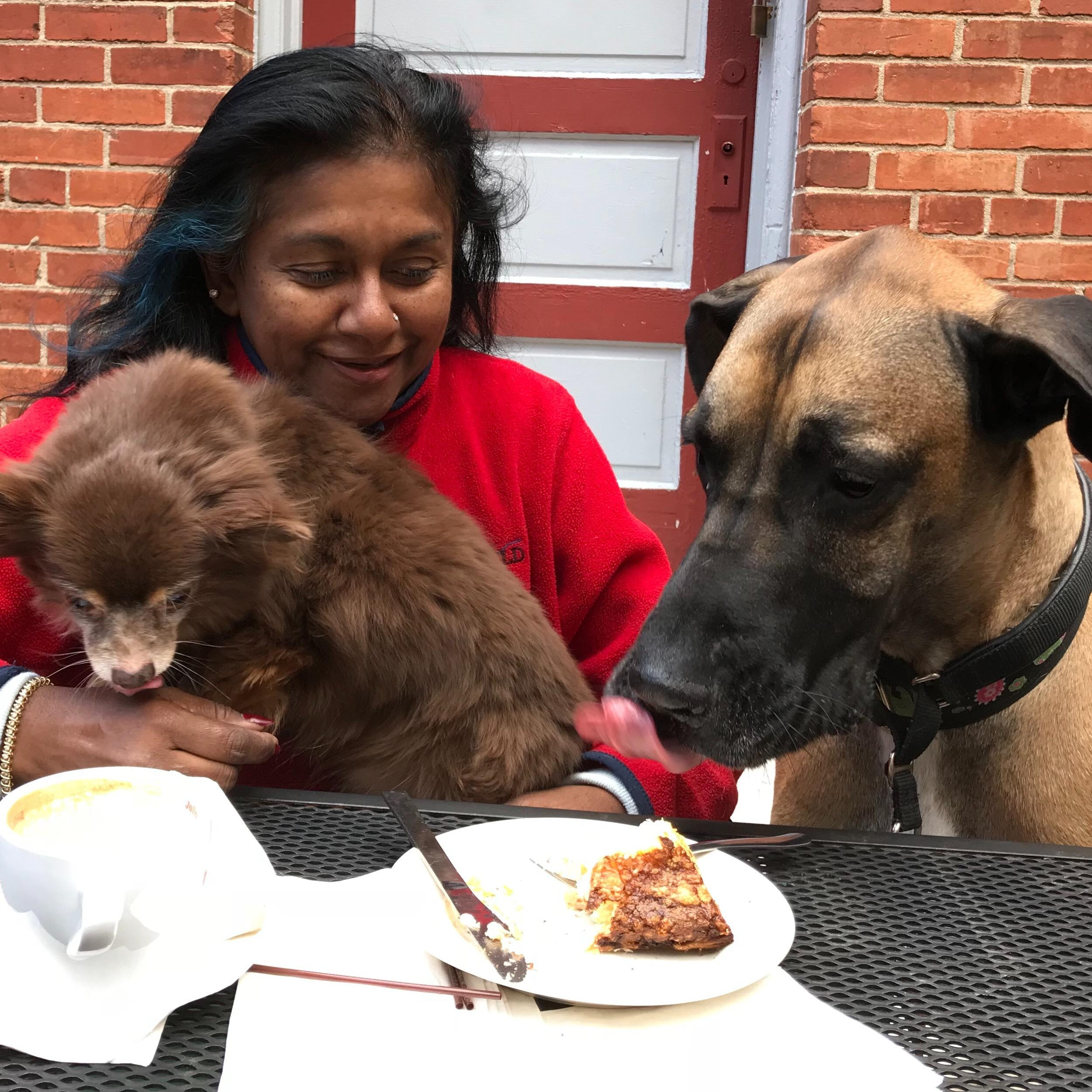 Lakshme's dog day care