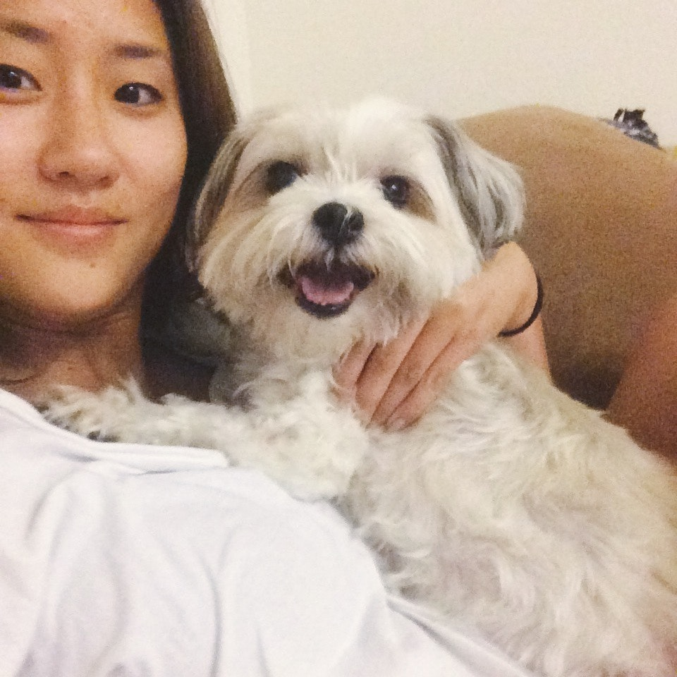 house sitter Lulu