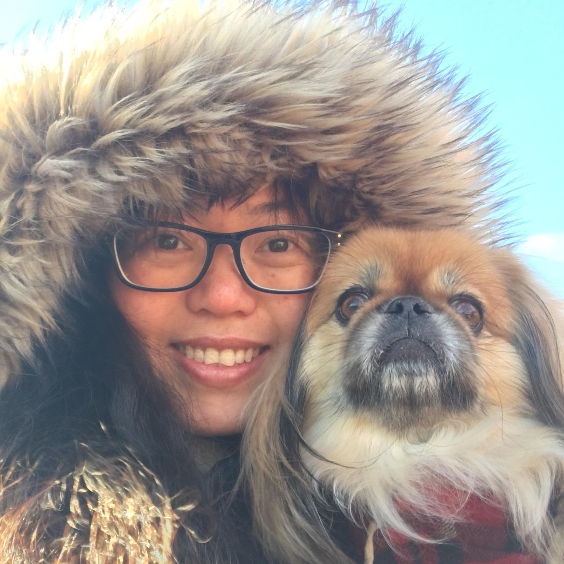 Jinyu's dog day care