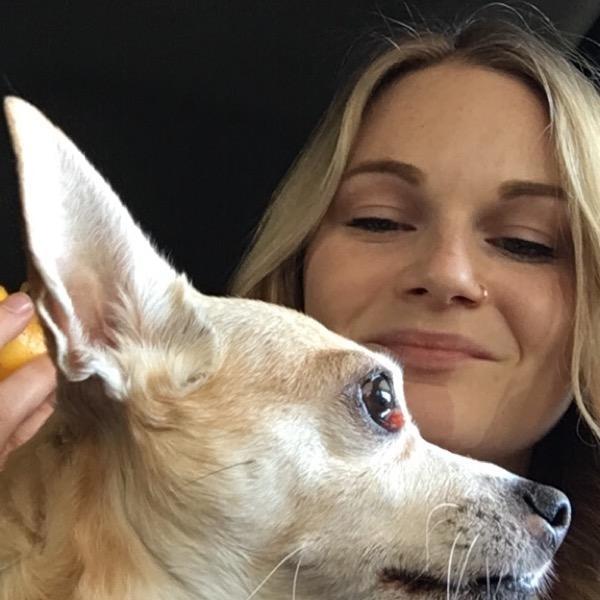 Jade's dog day care