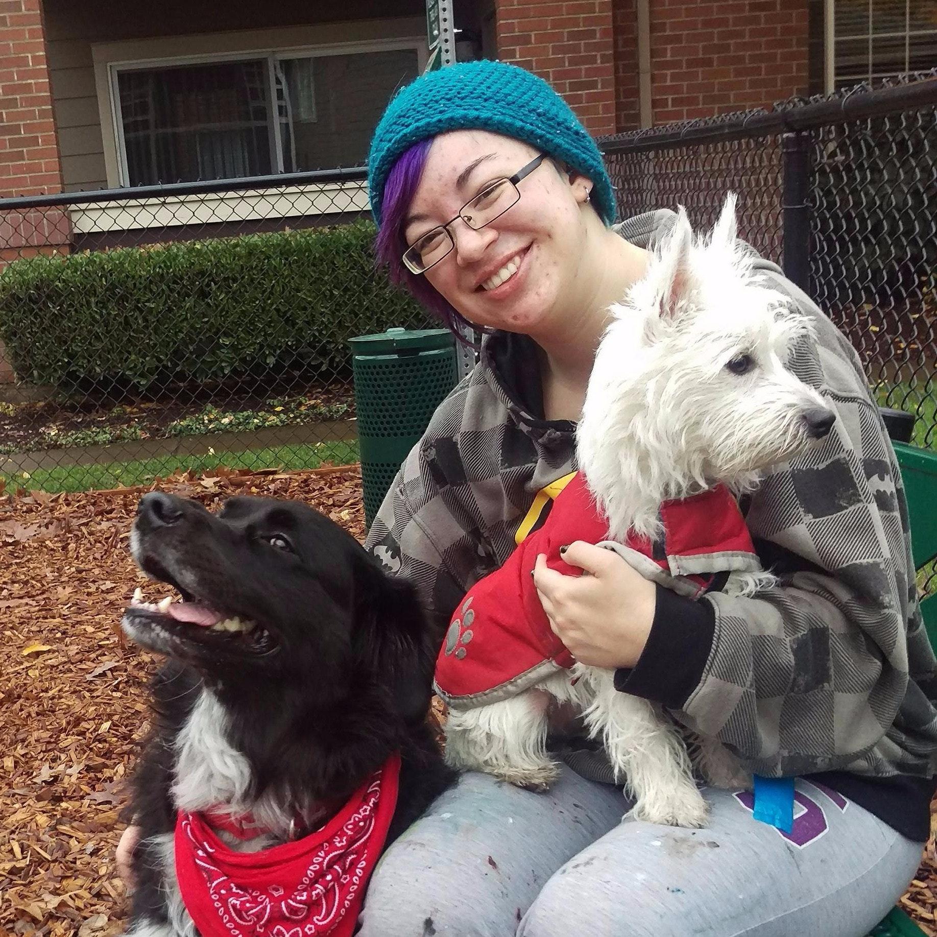 Jordyn's dog day care