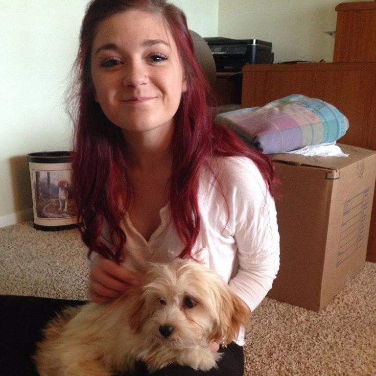 Maeve's dog day care