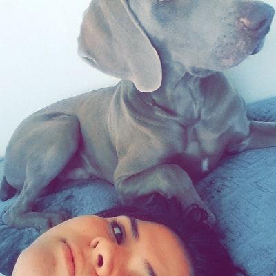 Ceci's dog day care