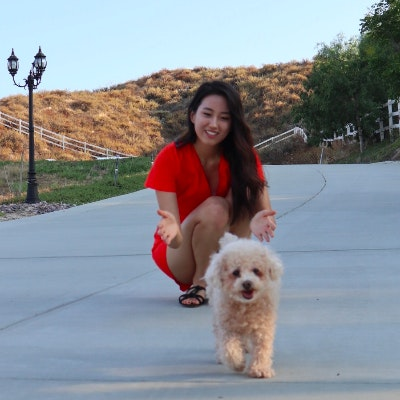 Misun's dog boarding
