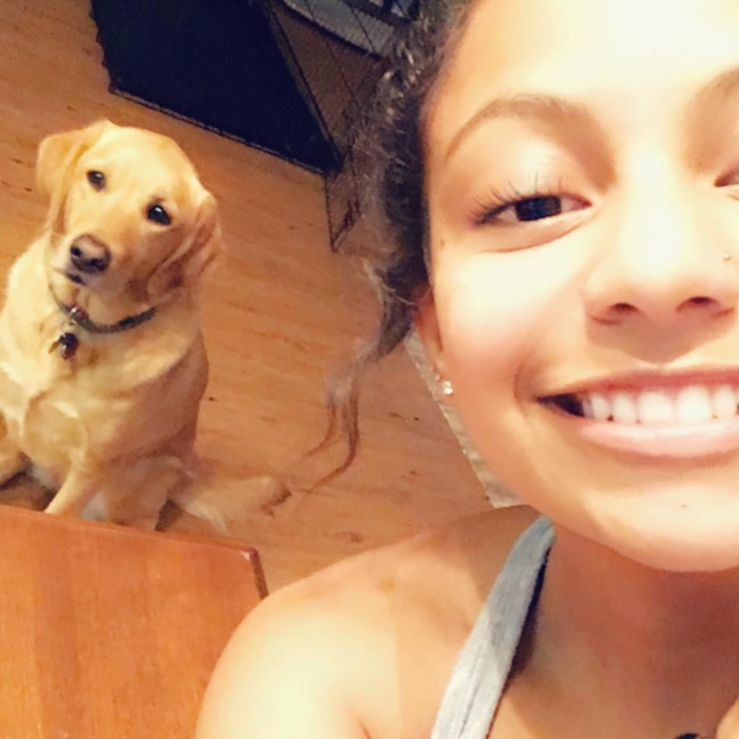 Alma's dog boarding