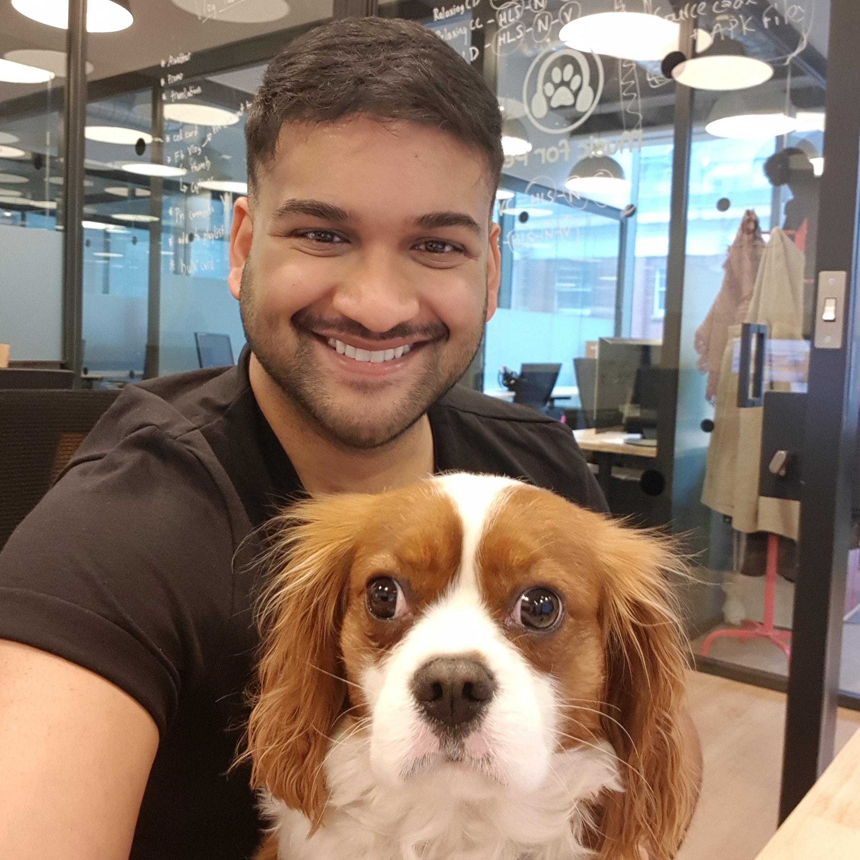 Amman's dog boarding