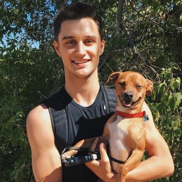 Lake's dog day care