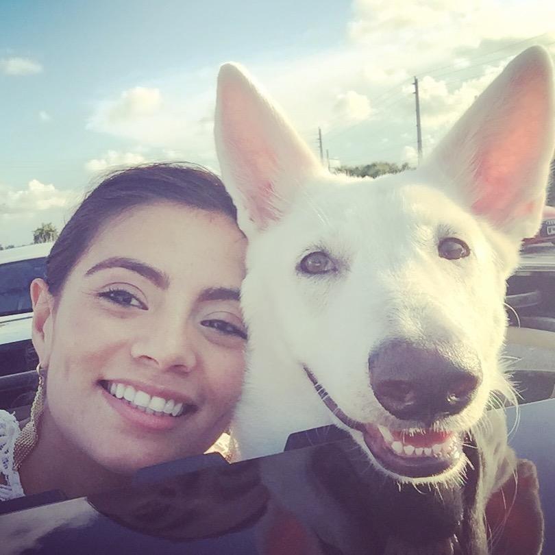 Julissa's dog boarding