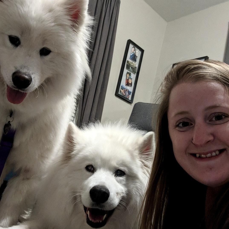 Kimberly's dog day care