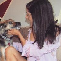 Analisa's dog boarding