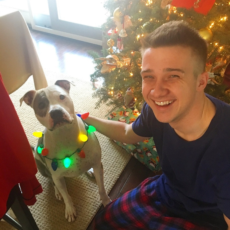 Alec's dog day care