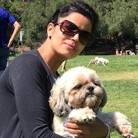 Meenakshi's dog day care