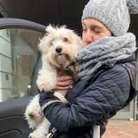Denise's dog boarding