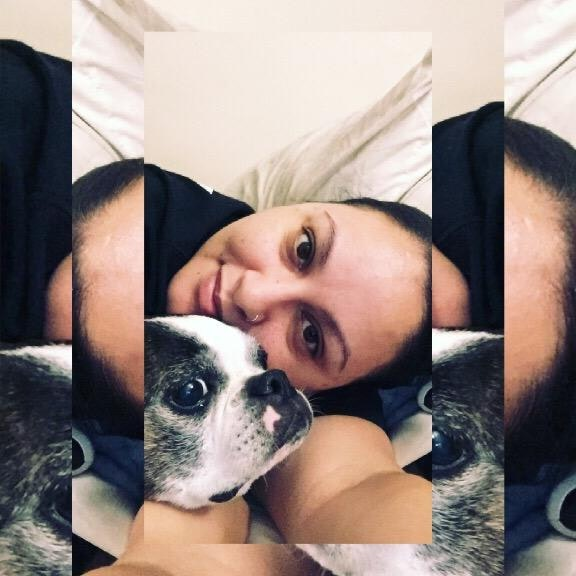 Sasha's dog boarding