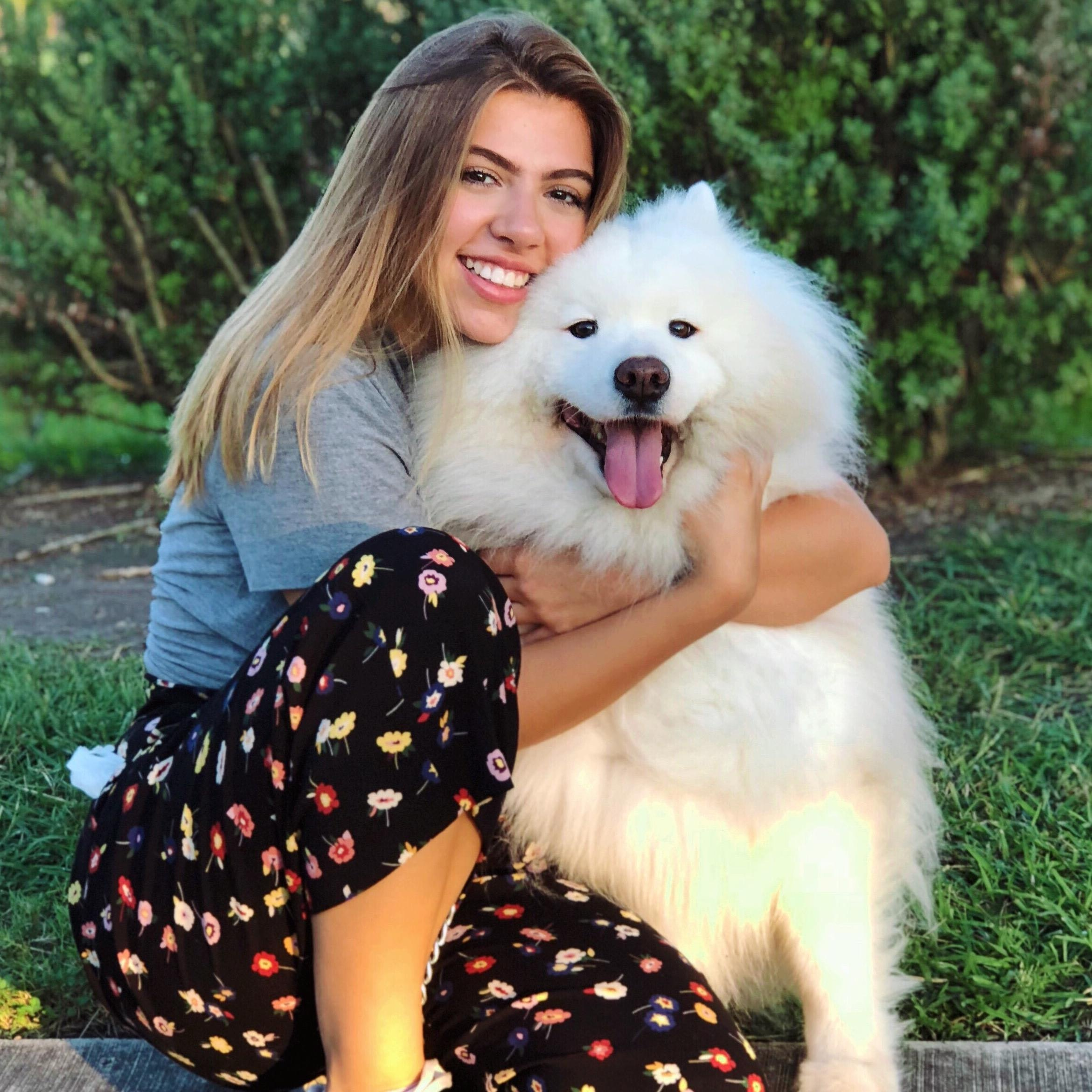 Paulina's dog day care