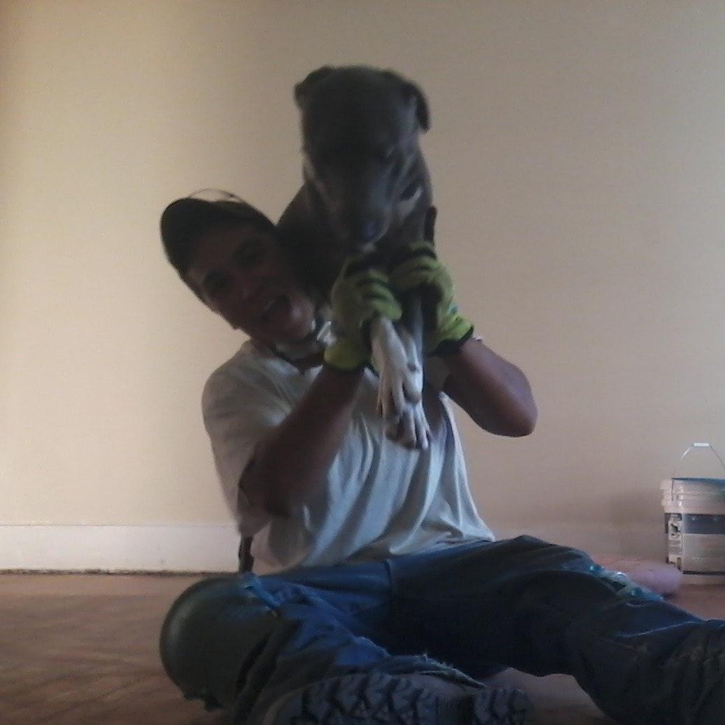 pet sitter Yesenia
