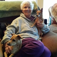 Bonnie's dog day care