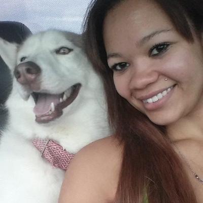 Em's dog day care
