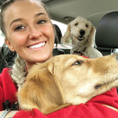 Georgie's dog day care