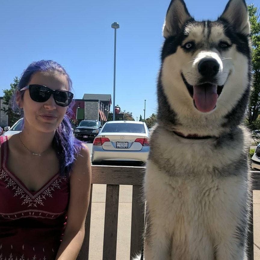 Samantha's dog day care