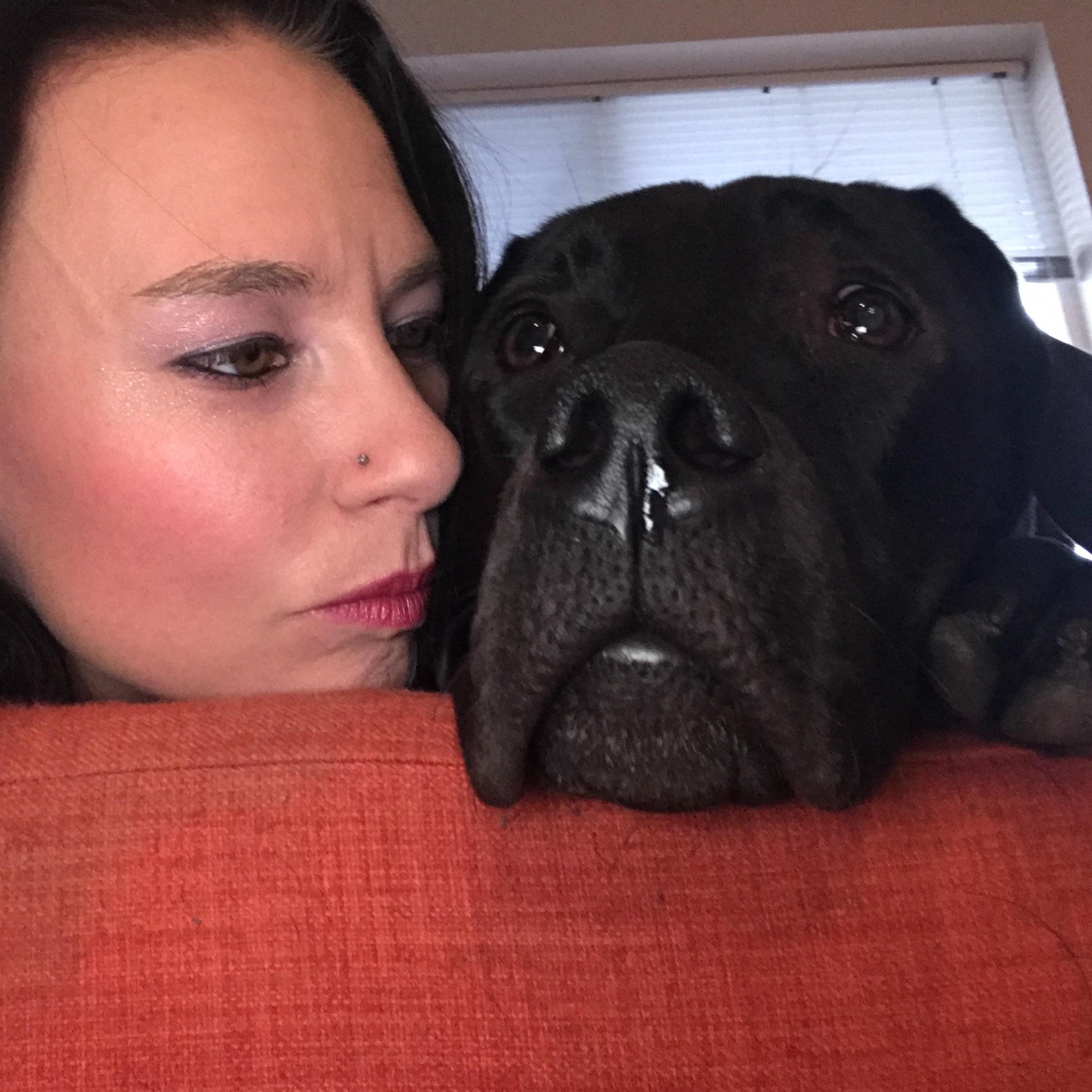 Ginny's dog day care