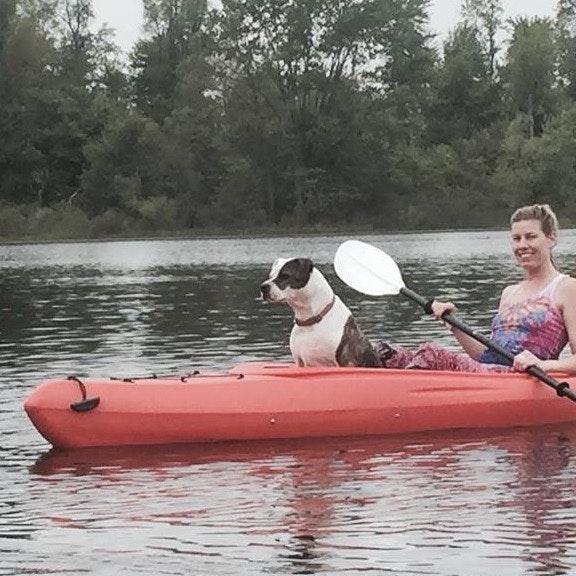 Kimberly & Cedar's dog boarding