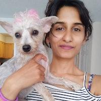 Rasia's dog day care