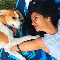 Rasia's dog boarding