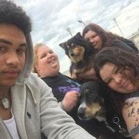 Becki's dog day care