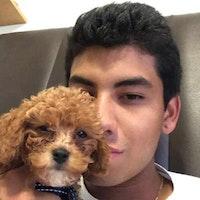 Juan Pablo's dog day care