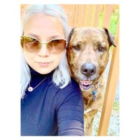 Miranda's dog day care