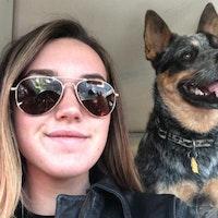 Kiley's dog day care