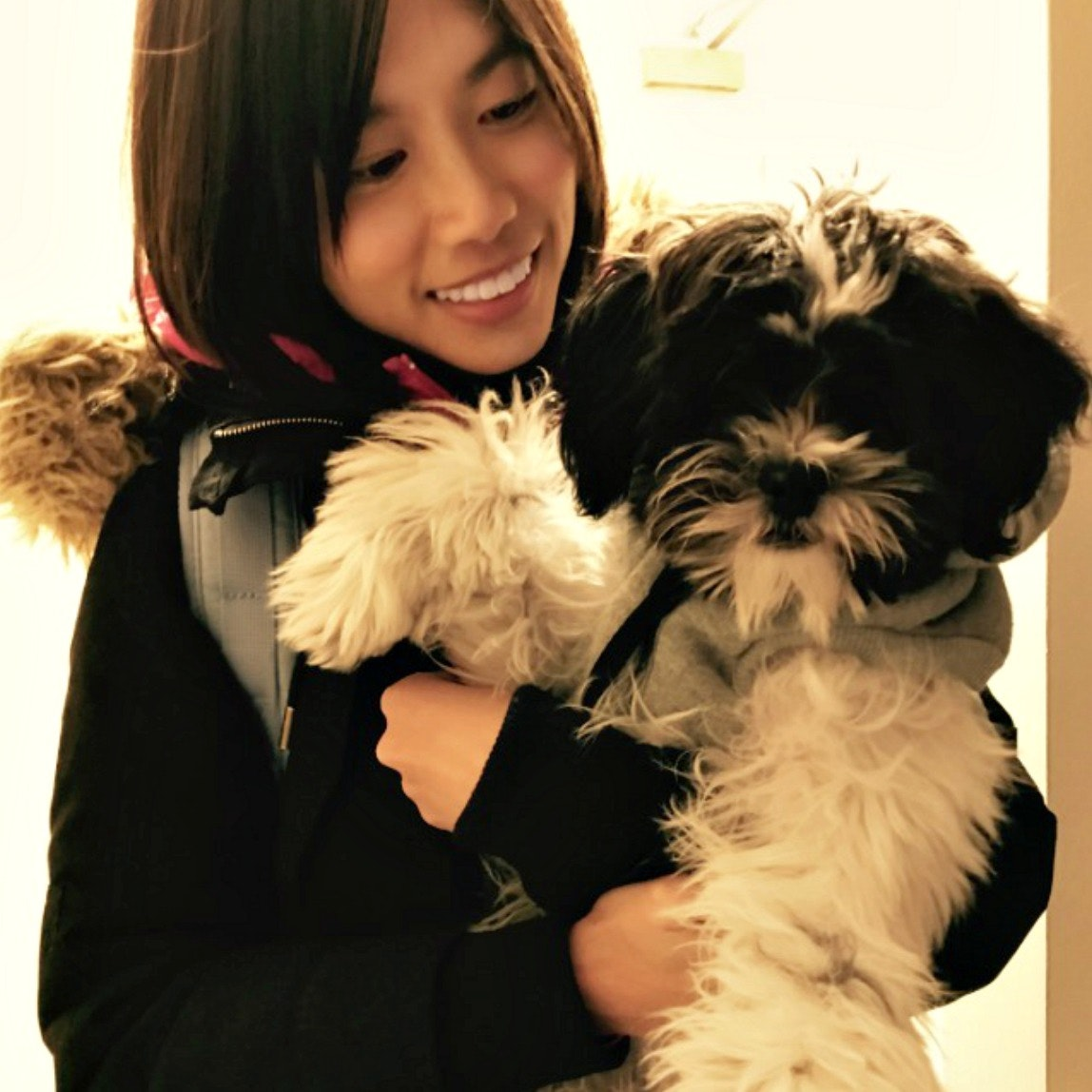 Rachael's dog boarding