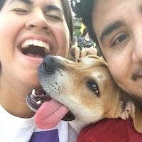 Danielle & Jesse's dog boarding