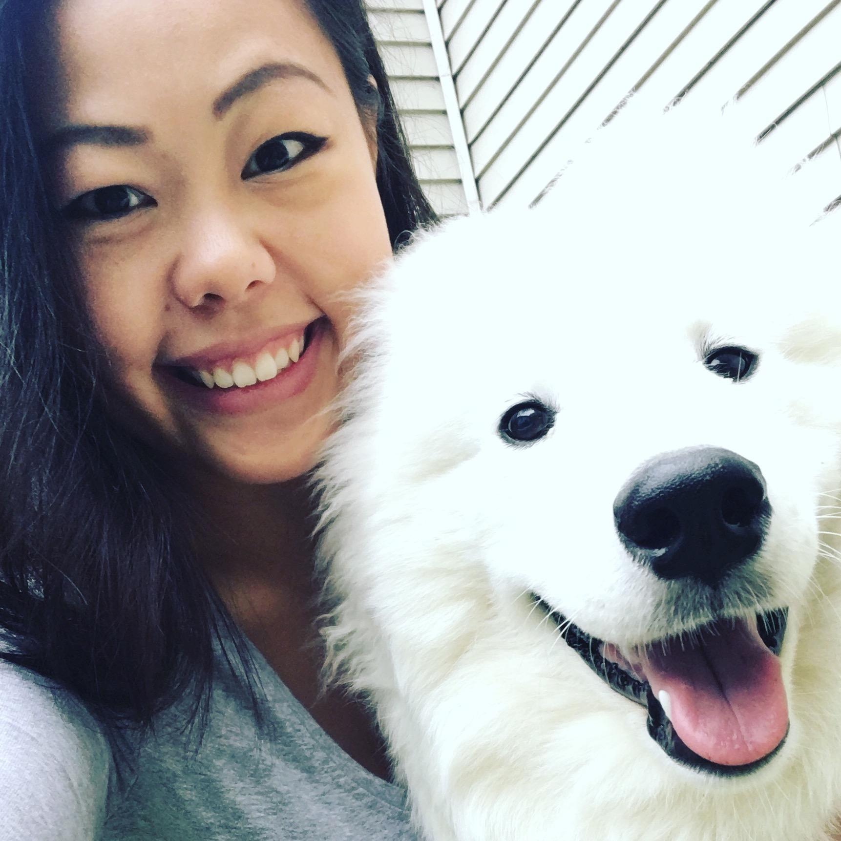 Chaochia's dog day care