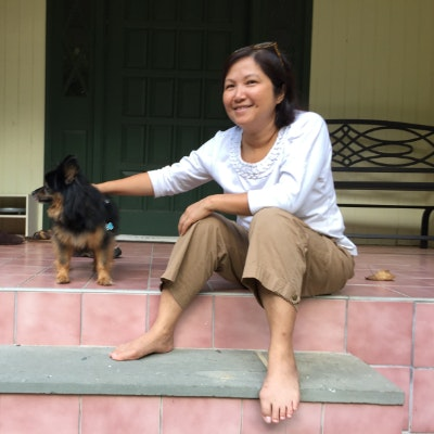 Judy's dog boarding
