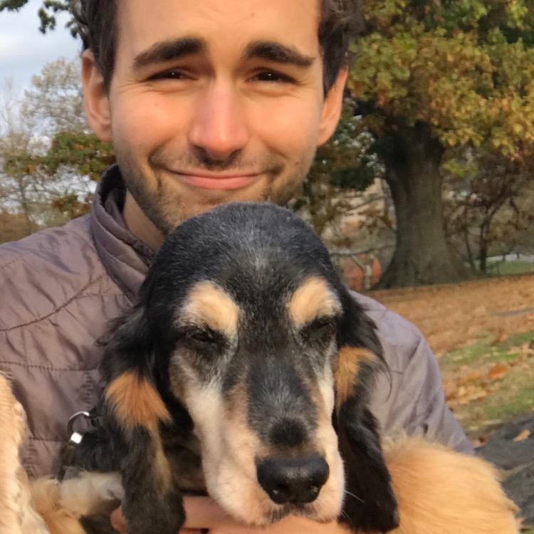 dog walker Aaron Simon