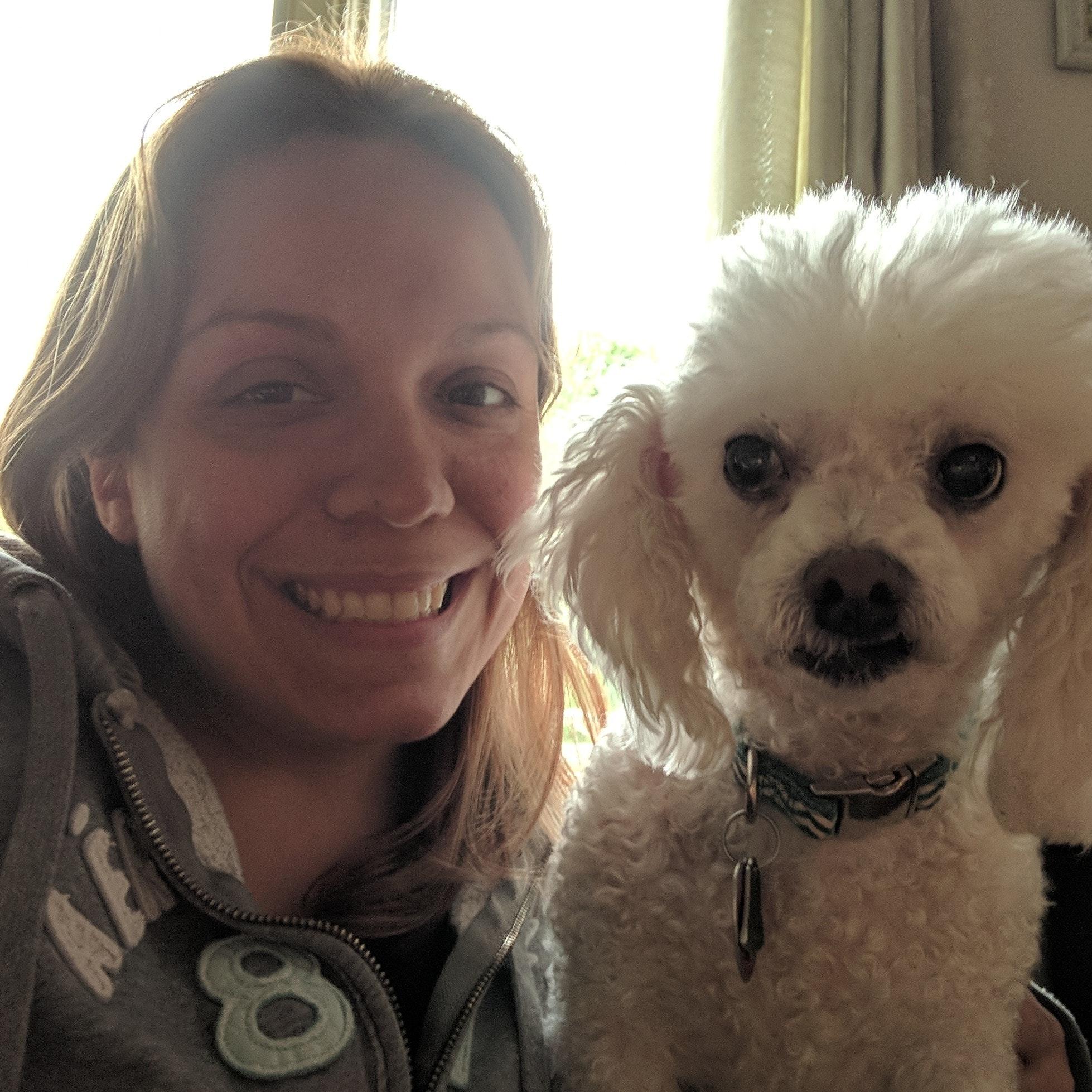 Miranda & Alan's dog day care