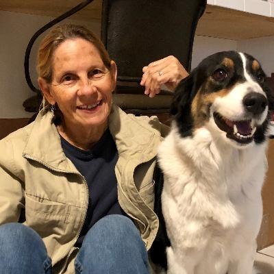 Pilar's dog day care