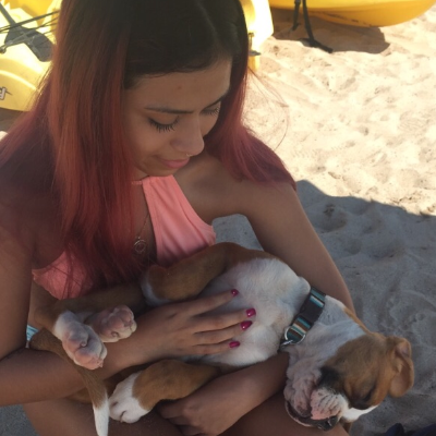 Alexia's dog day care