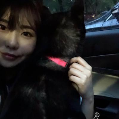 dog walker Seunghee