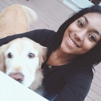 Anais's dog day care