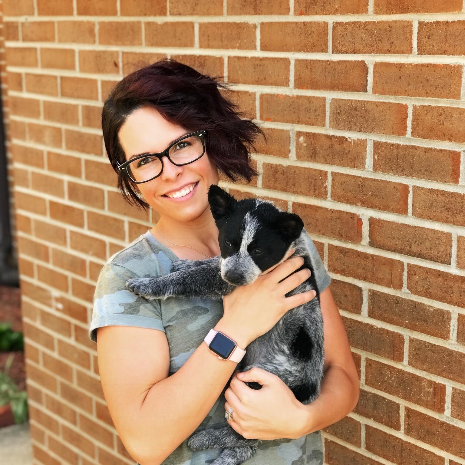 Kristyne's dog day care