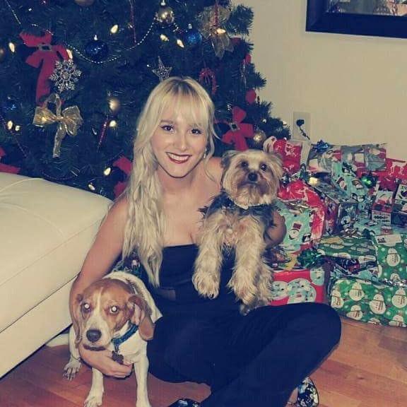 Amalia's dog day care