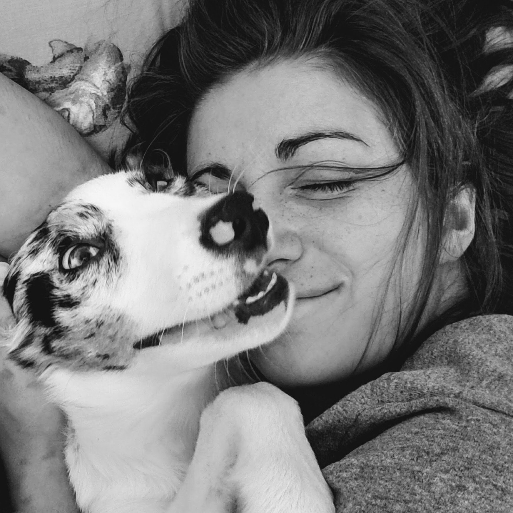 Alexandrea's dog day care