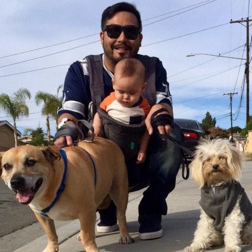 AJ's dog day care